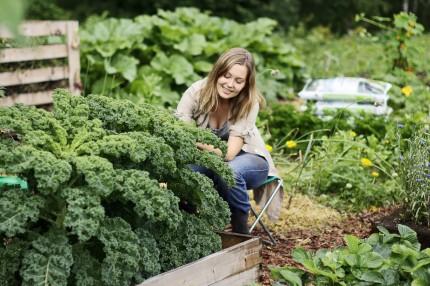 Удобрение для овощей Кеккила 6 кг_04