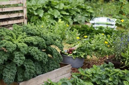 Удобрение для овощей Кеккила 6 кг_06