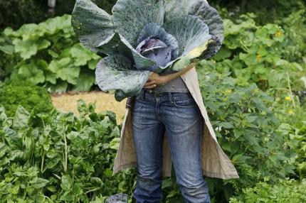 Удобрение для овощей Кеккила 6 кг_10