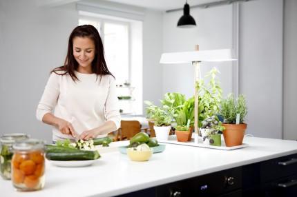 Фитосветильник для досвечивания растений Кеккила_03