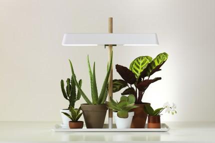 Фитосветильник для досвечивания растений Кеккила_05