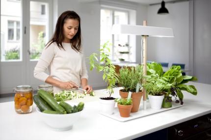 Фитосветильник для досвечивания растений Кеккила_06