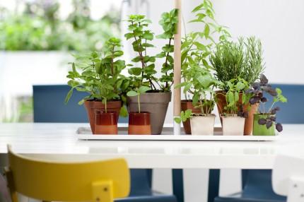 Фитосветильник для досвечивания растений Кеккила_07