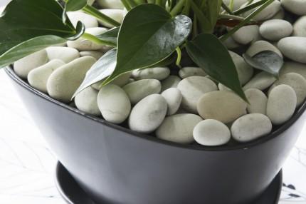 Камень декоративный «Белый жемчуг» Кеккила_04